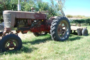 Farmall resized