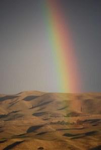 rainbow resized