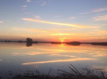 img_2331-1-sunrise-at-blind-4