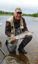 Caught this salmon on a dry fly while trout fishing.