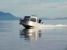 The guide boats travel at about 20 knots, so they can run ahead of the mother ship or catch up easily if necessary.
