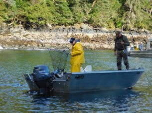 Mason netted Bob's silver while they fished from one of the skiffs.