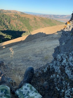 The buck I was looking for was living in the canyon. He didn't show.